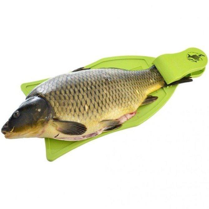 Deska do skrobania i oprawiania ryb
